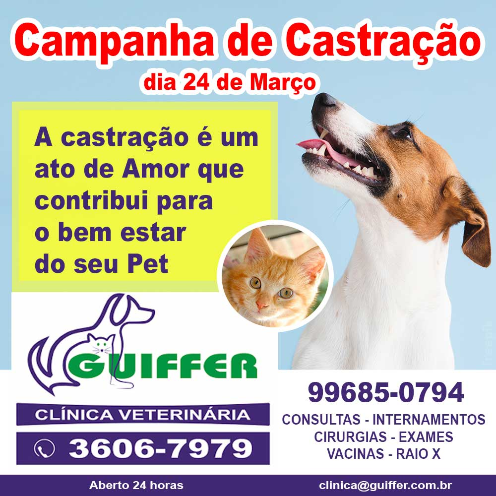 Campanha-Castracao-2020-5