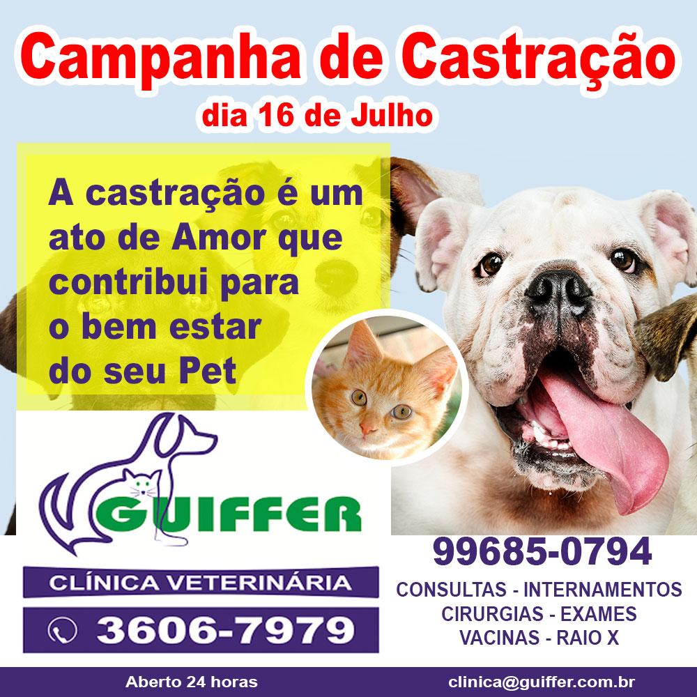 Campanha-Castracao-2020-julho