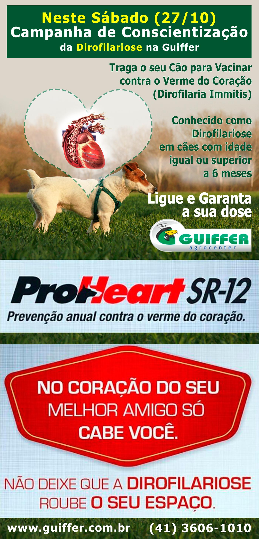 prevencao-anual-verme-coracao-3